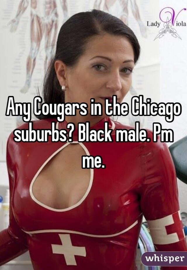 Chubby Black Women Porn