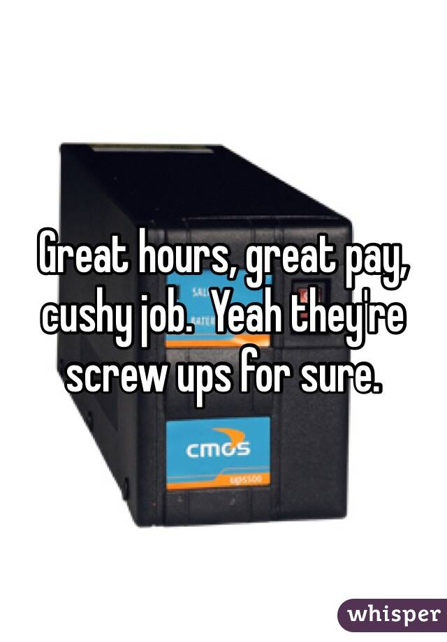 Great hours, great pay, cushy job. Yeah they're screw ups for sure ...