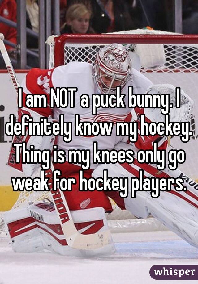 I am NOT a puck bunny. I definitely know my hockey. Thing is my knees only go weak for hockey players.