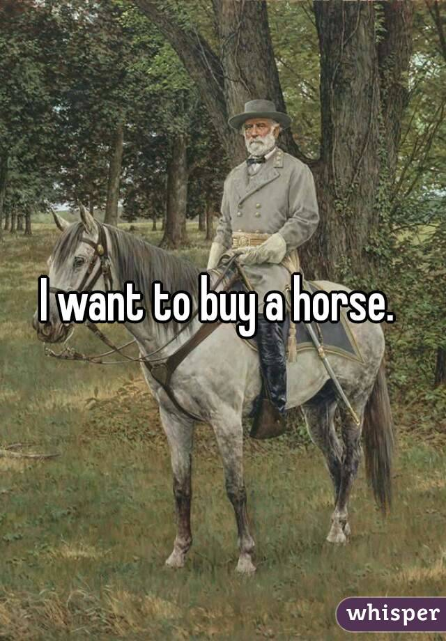 I want to buy a horse.