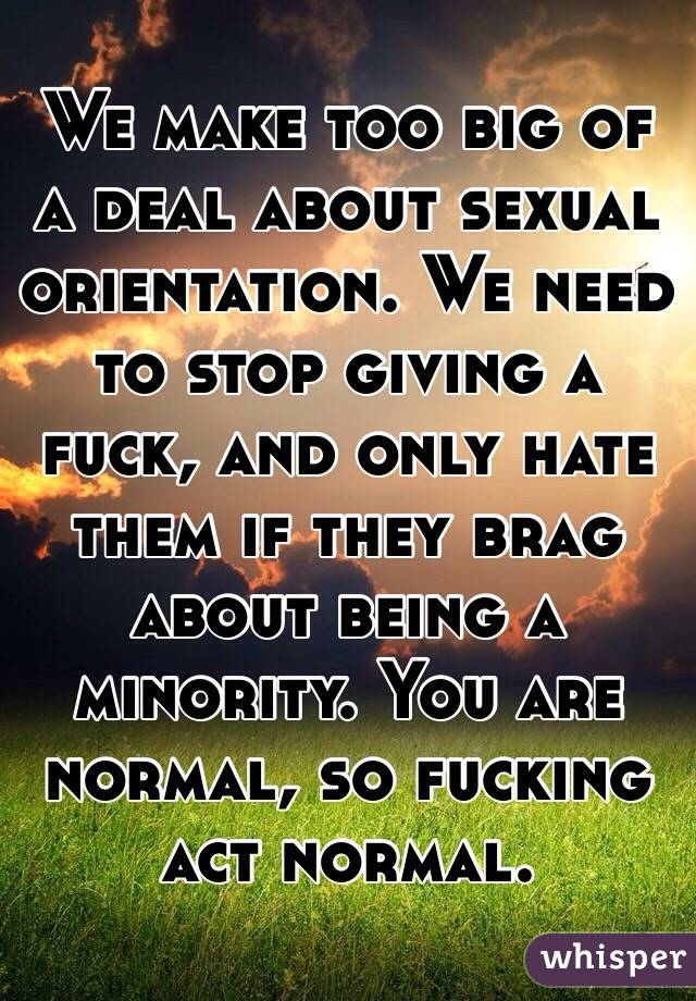 We make too big of a deal about sexual orientation. We need to stop giving a fuck, and only hate them if they brag about being a minority. You are normal, so fucking act normal.