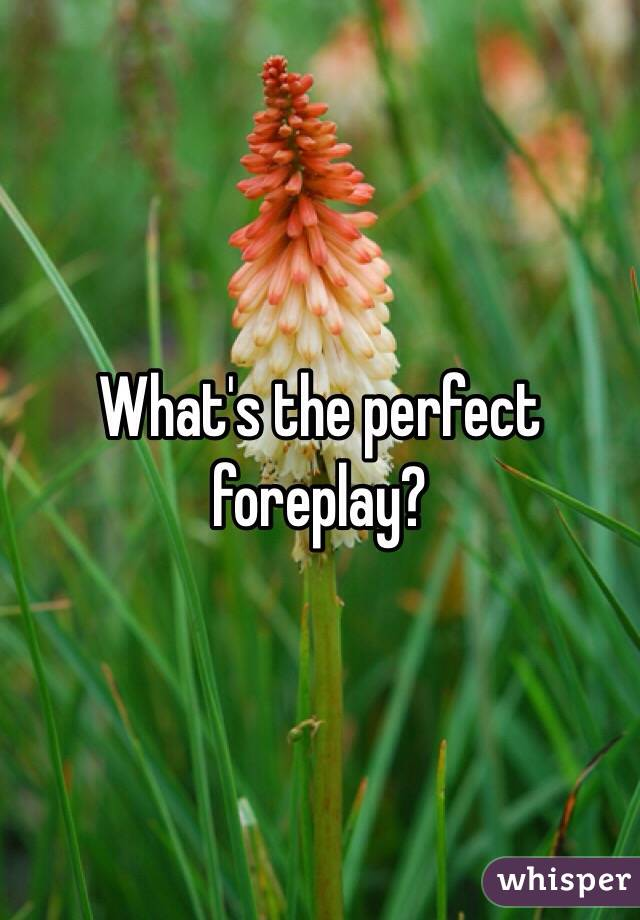 What's the perfect foreplay?
