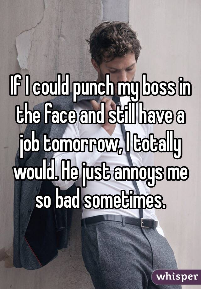 If I could punch my boss in the face and still have a job tomorrow, I totally would. He just annoys me so bad sometimes.