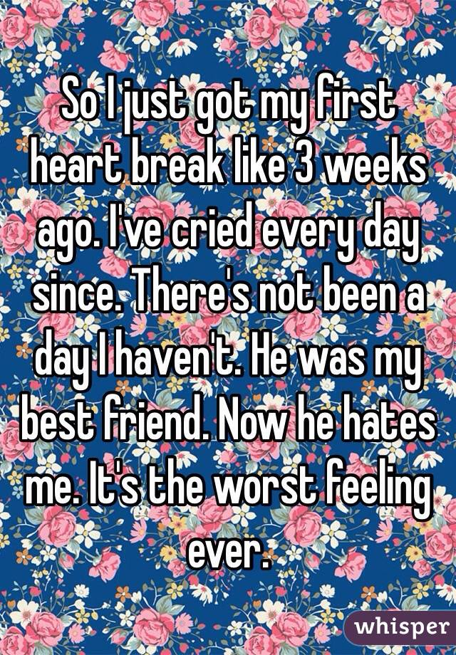 So I just got my first heart break like 3 weeks ago. I've cried every day since. There's not been a day I haven't. He was my best friend. Now he hates me. It's the worst feeling ever.