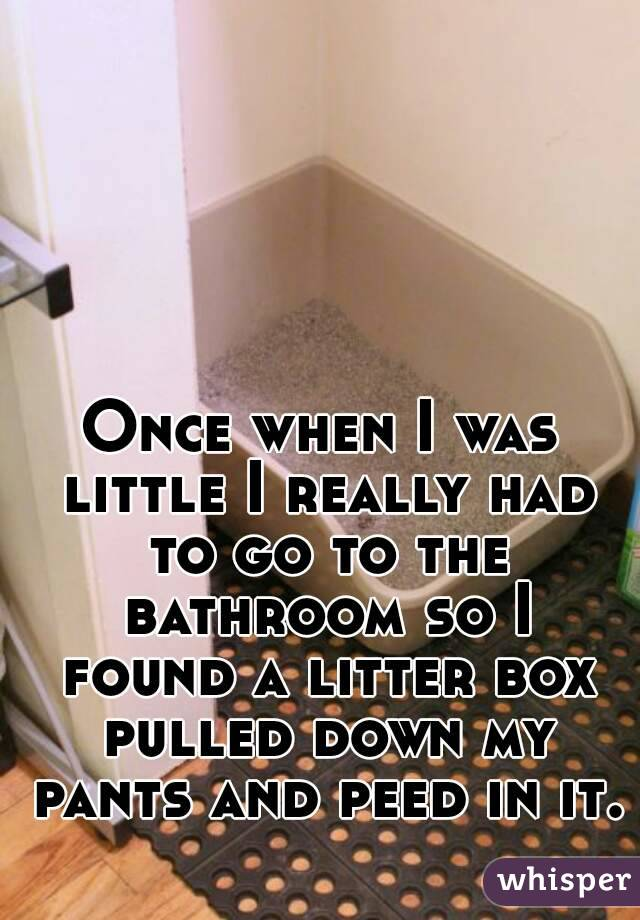 Once when I was little I really had to go to the bathroom so I found a litter box pulled down my pants and peed in it.