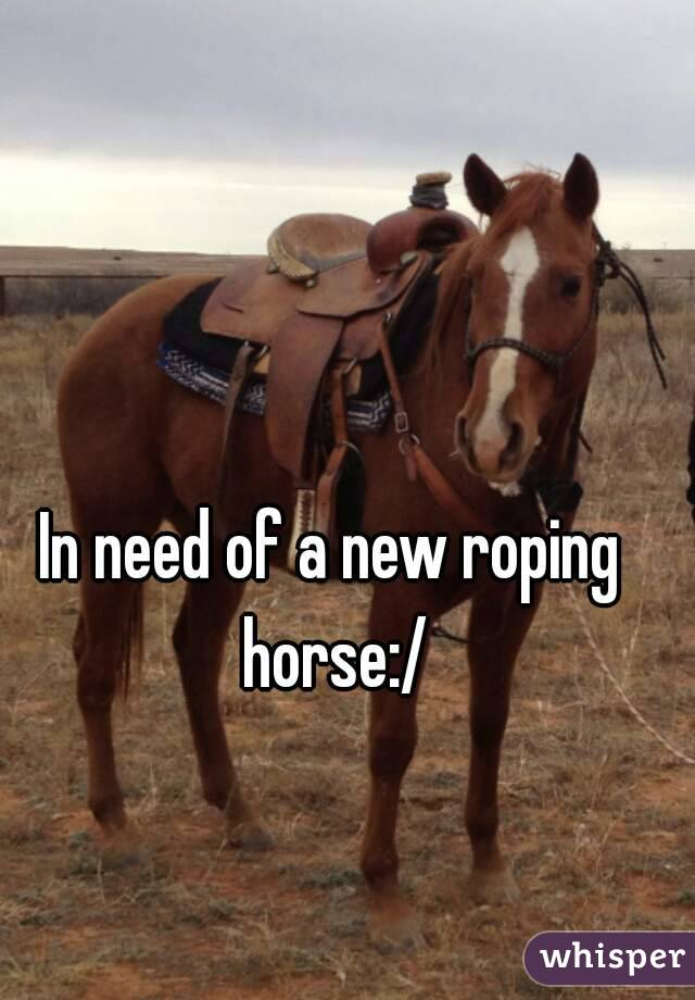 In need of a new roping horse:/