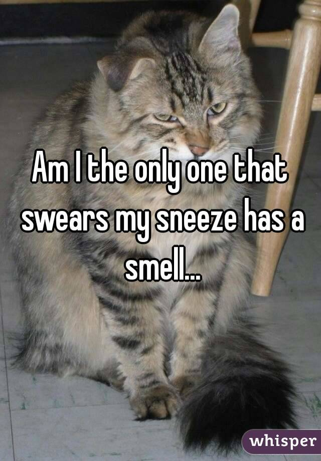 Am I the only one that swears my sneeze has a smell...