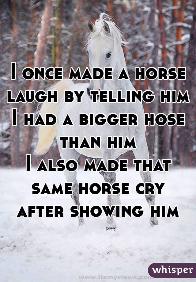 I once made a horse laugh by telling him I had a bigger hose than him  I also made that same horse cry after showing him