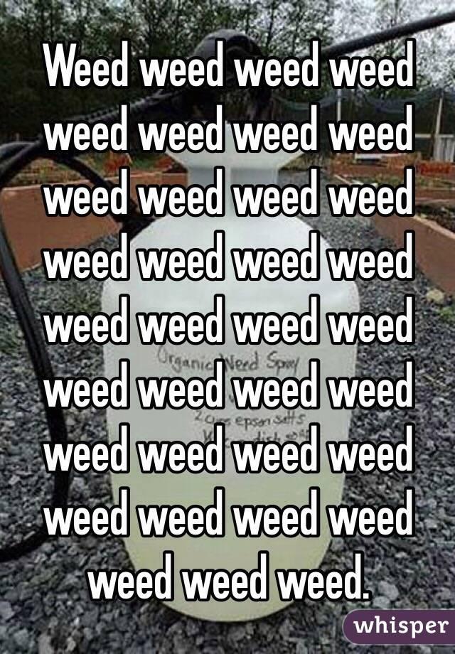 Weed weed weed weed weed weed weed weed weed weed weed weed weed weed weed weed weed weed weed weed weed weed weed weed weed weed weed weed weed weed weed weed weed weed weed.