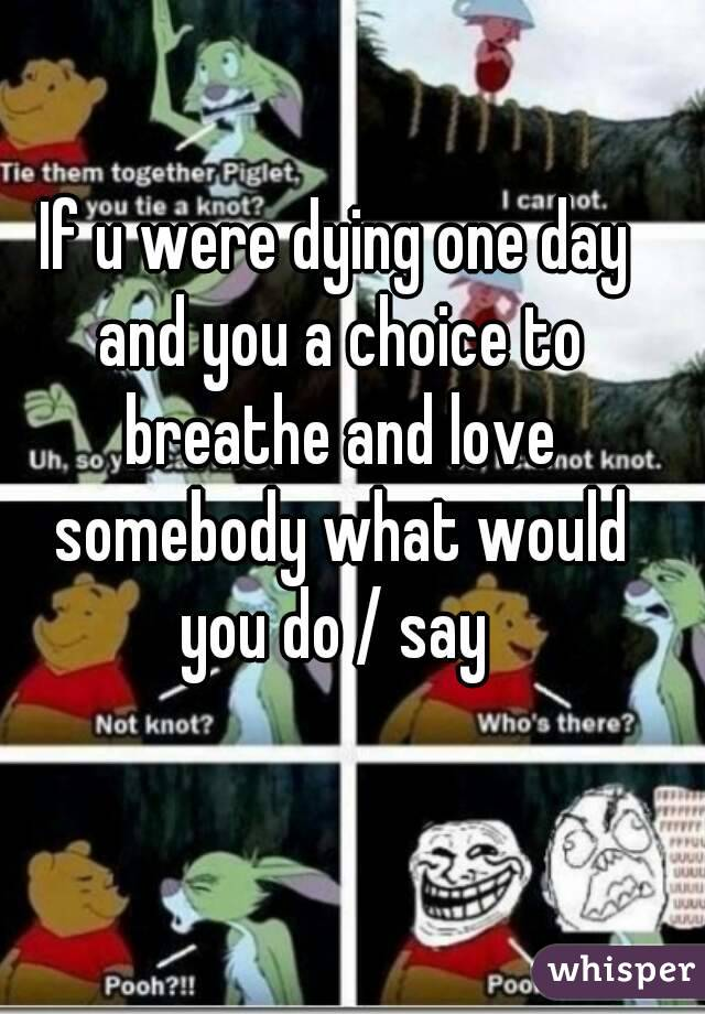If u were dying one day and you a choice to breathe and love somebody what would you do / say