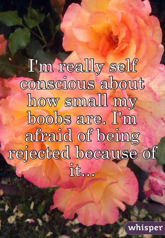 I'm really self conscious about how small my boobs are. I'm afraid of being rejected because of it...