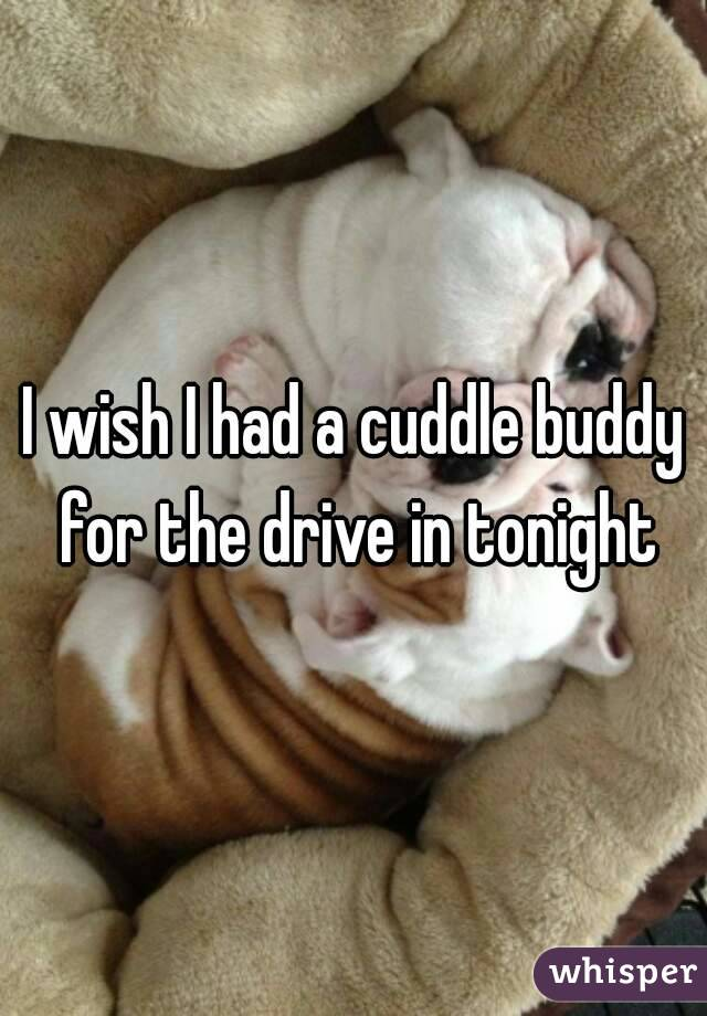 I wish I had a cuddle buddy for the drive in tonight