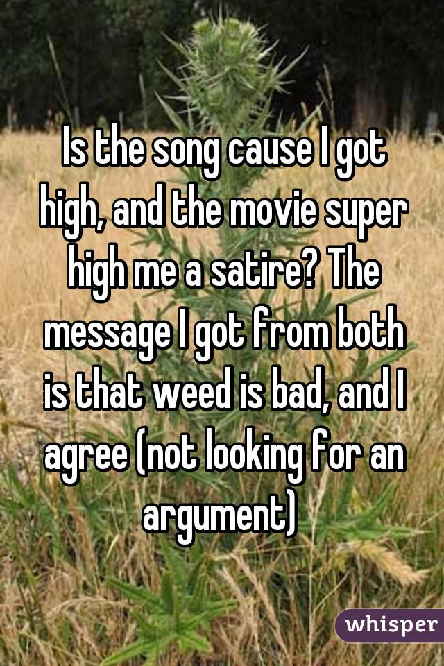 Is the song cause I got high, and the movie super high me a satire? The message I got from both is that weed is bad, and I agree (not looking for an argument)