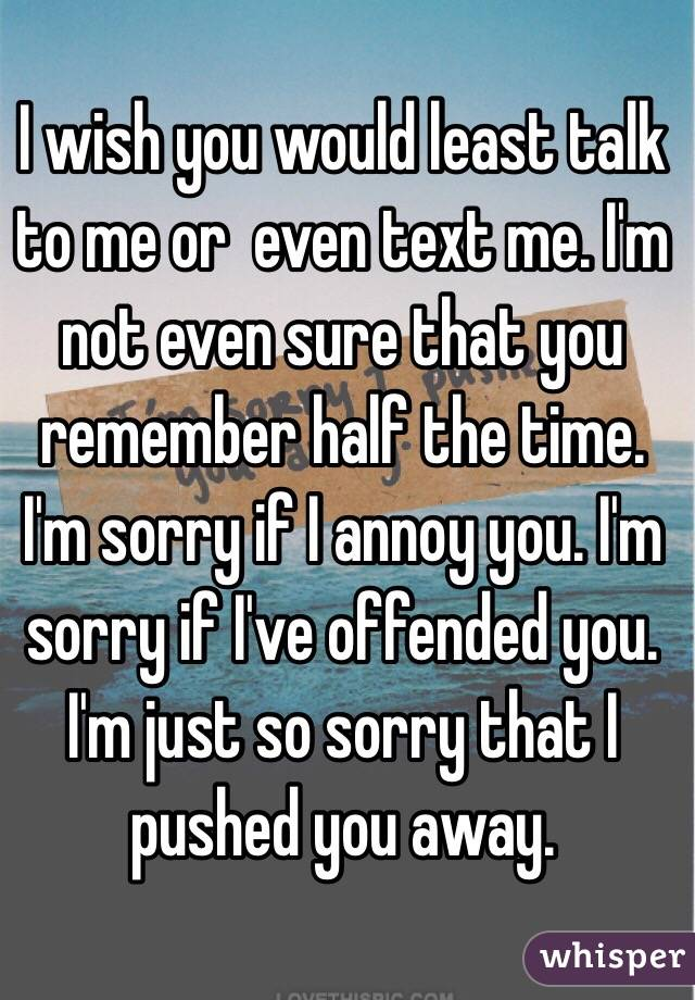 I wish you would least talk to me or  even text me. I'm not even sure that you remember half the time. I'm sorry if I annoy you. I'm sorry if I've offended you. I'm just so sorry that I pushed you away.