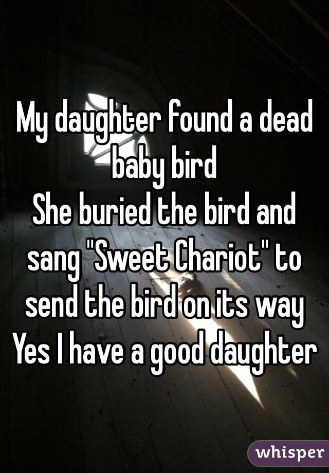 "My daughter found a dead baby bird She buried the bird and  sang ""Sweet Chariot"" to send the bird on its way Yes I have a good daughter"