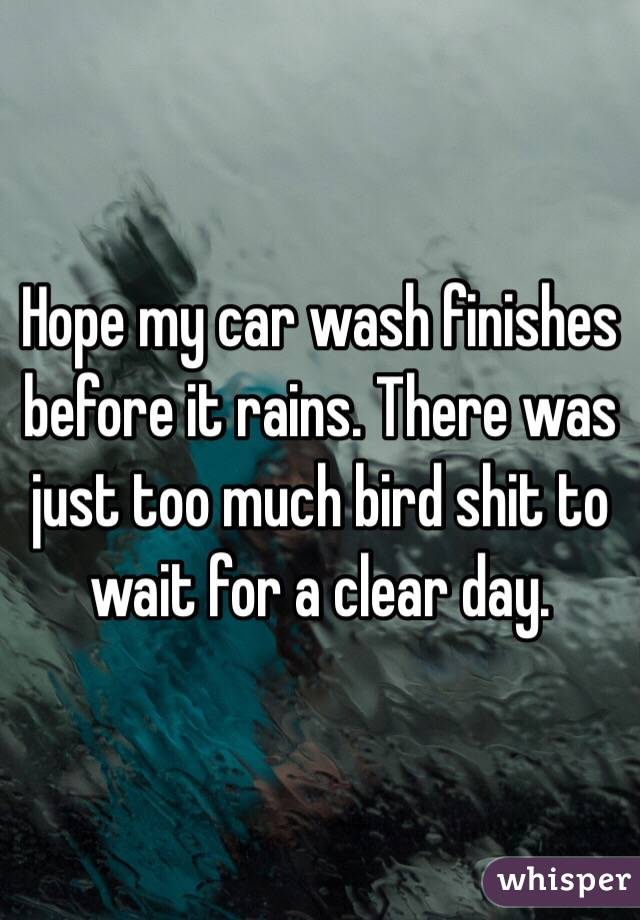 Hope my car wash finishes before it rains. There was just too much bird shit to wait for a clear day.