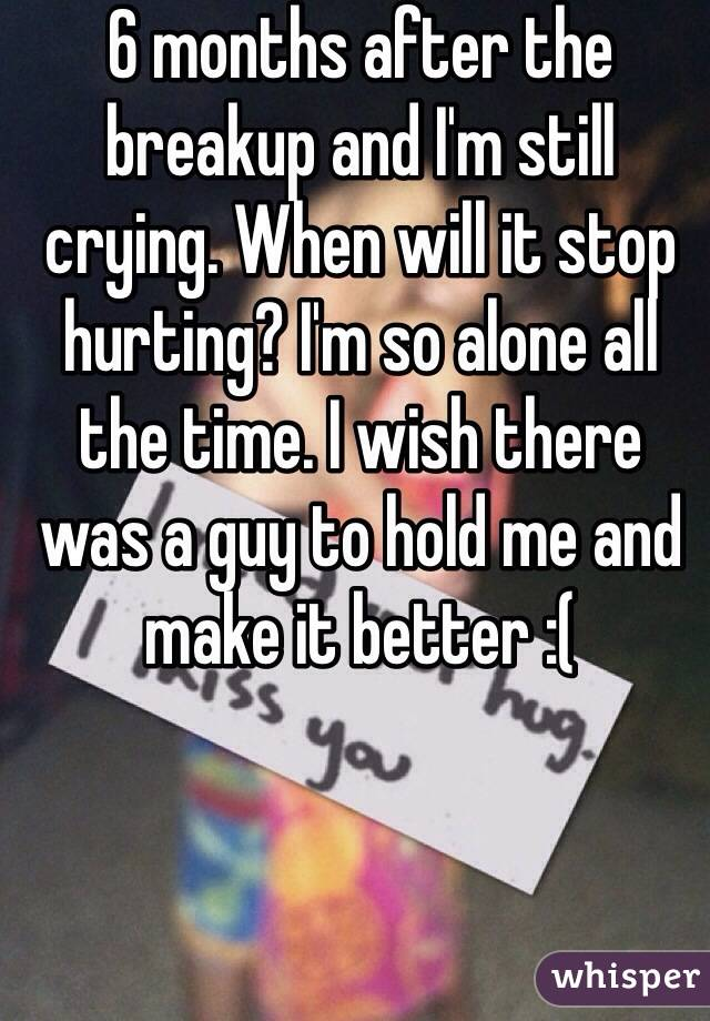 6 months after the breakup and I'm still crying. When will it stop hurting? I'm so alone all the time. I wish there was a guy to hold me and make it better :(