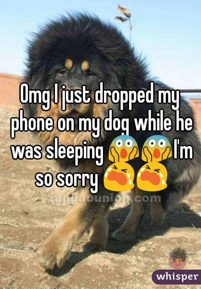 Omg I just dropped my phone on my dog while he was sleeping 😱😱I'm so sorry 😭😭