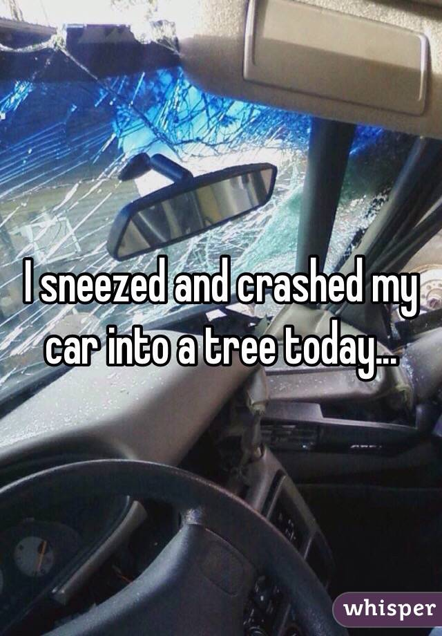 I sneezed and crashed my car into a tree today...