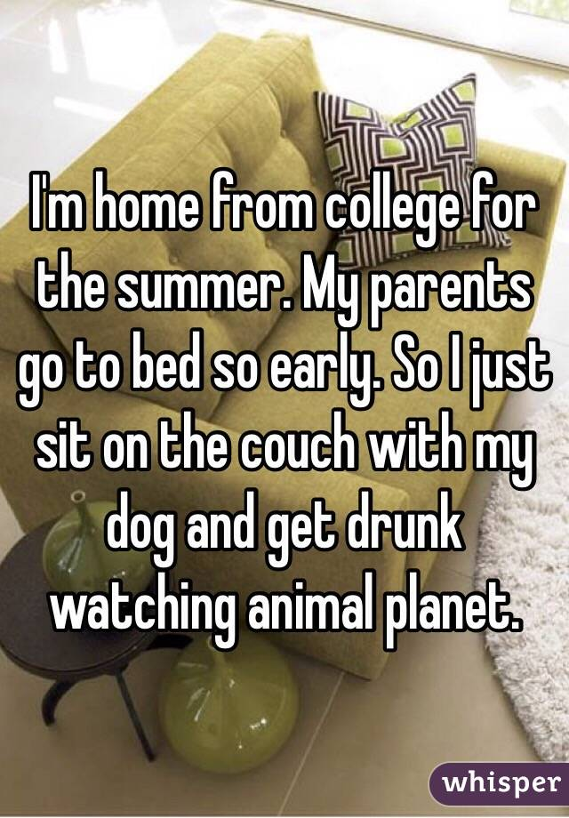 I'm home from college for the summer. My parents go to bed so early. So I just sit on the couch with my dog and get drunk watching animal planet.