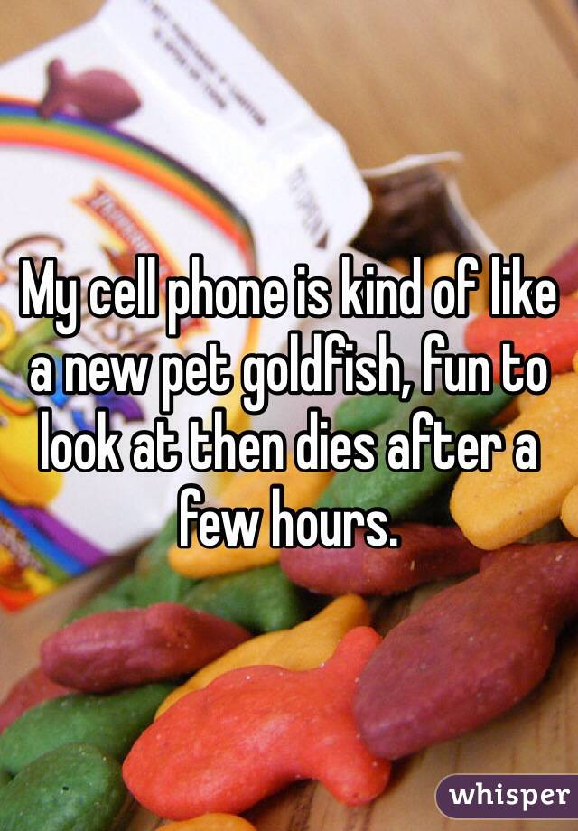 My cell phone is kind of like a new pet goldfish, fun to look at then dies after a few hours.