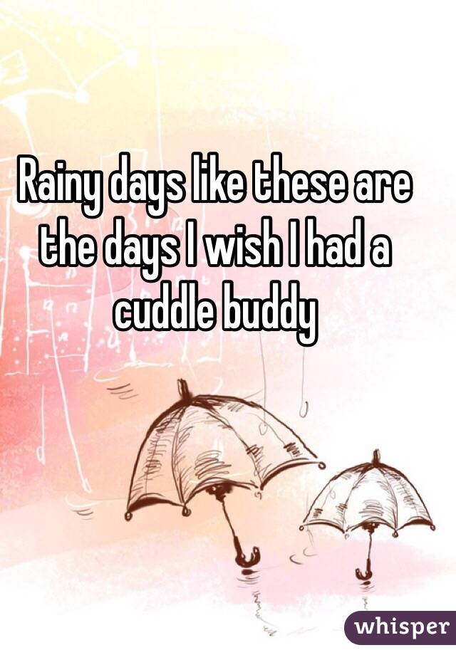 Rainy days like these are the days I wish I had a cuddle buddy