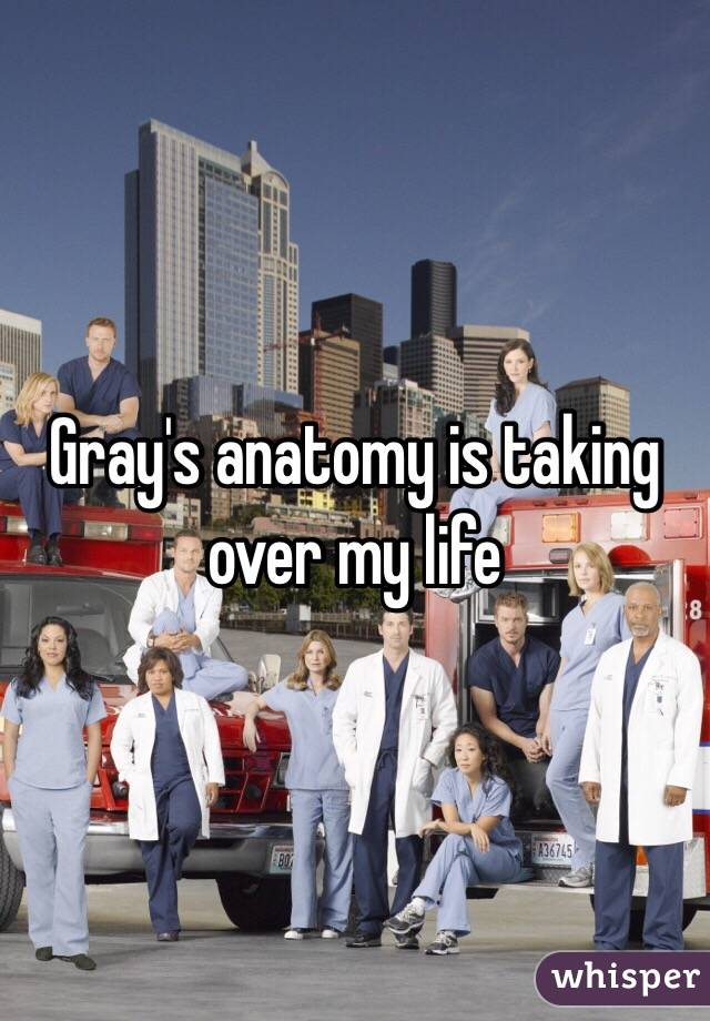 Gray's anatomy is taking over my life