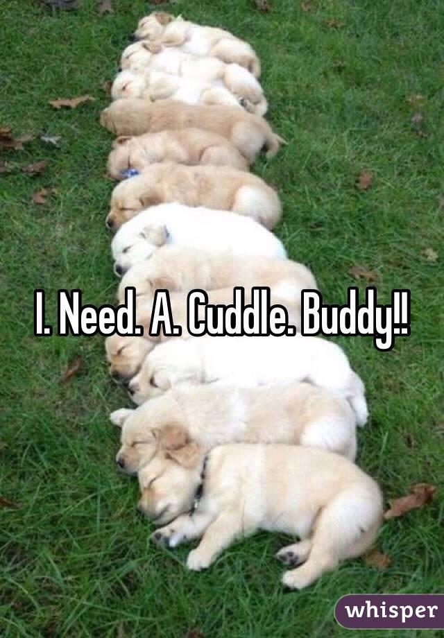 I. Need. A. Cuddle. Buddy!!