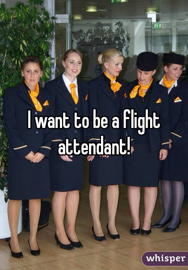 I want to be a flight attendant!