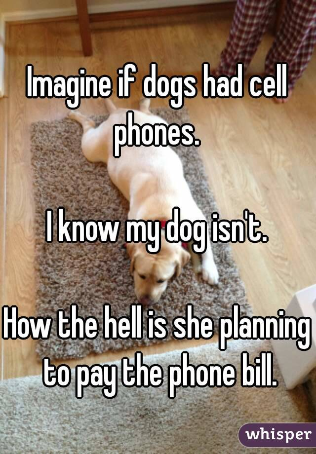 Imagine if dogs had cell phones.   I know my dog isn't.  How the hell is she planning to pay the phone bill.