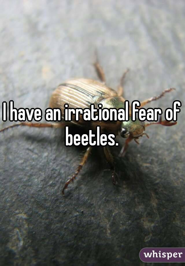 I have an irrational fear of beetles.