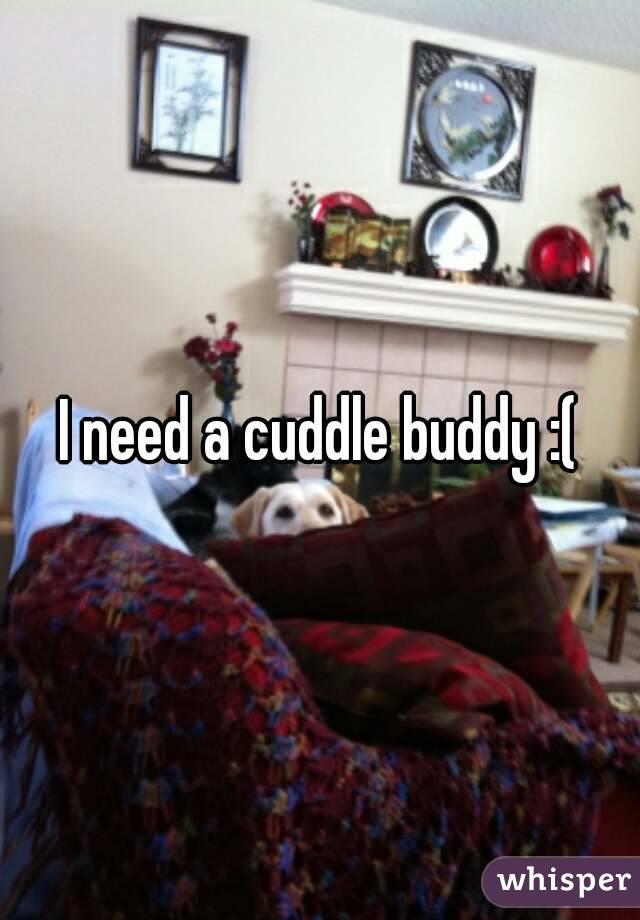 I need a cuddle buddy :(