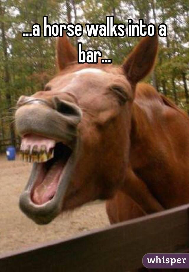 ...a horse walks into a bar...