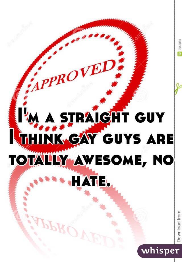I'm a straight guy I think gay guys are totally awesome, no hate.