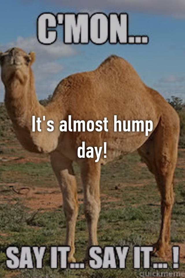 hump day hookup horror stories