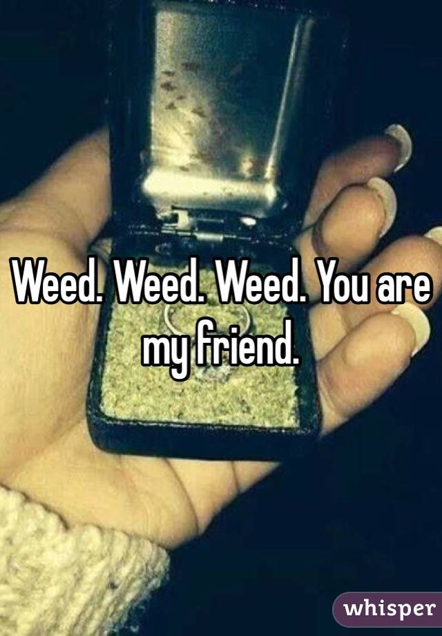 Weed. Weed. Weed. You are my friend.