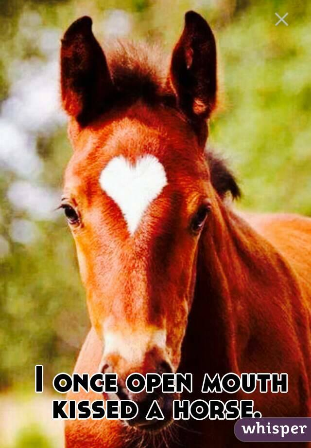I once open mouth kissed a horse.