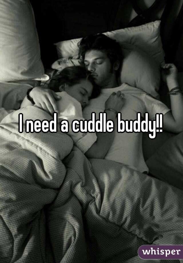 I need a cuddle buddy!!