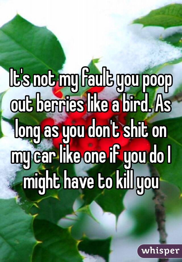 It's not my fault you poop out berries like a bird. As long as you don't shit on my car like one if you do I might have to kill you