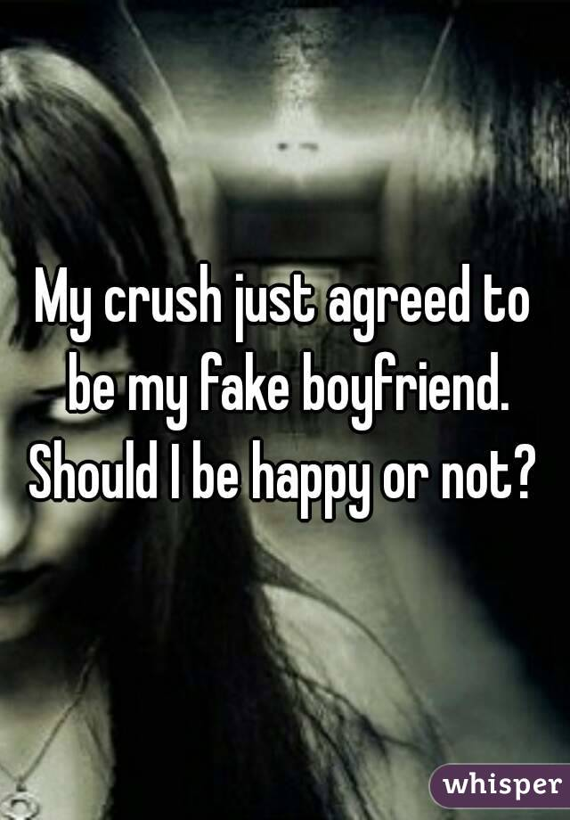 My crush just agreed to be my fake boyfriend. Should I be happy or not?