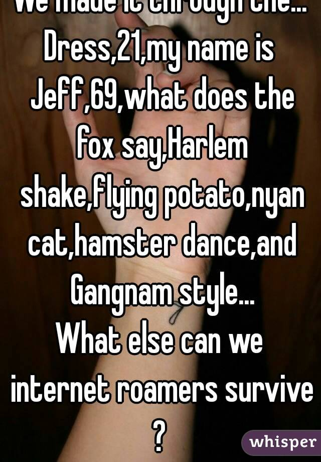 We made it through the... Dress,21,my name is Jeff,69,what does the fox say,Harlem shake,flying potato,nyan cat,hamster dance,and Gangnam style... What else can we internet roamers survive ?