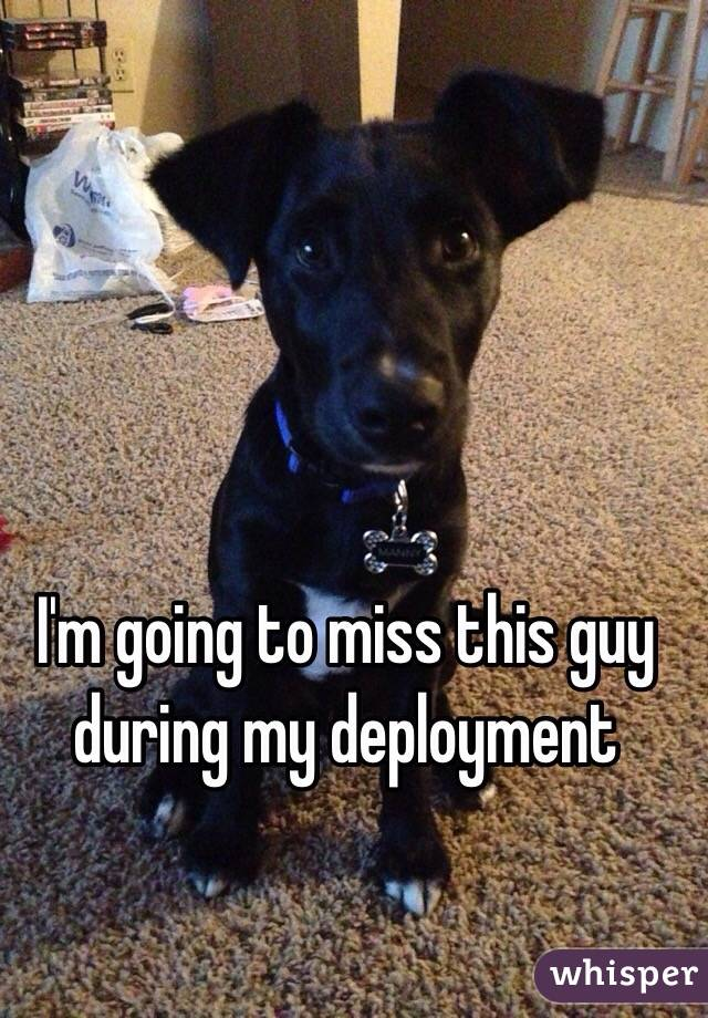 I'm going to miss this guy during my deployment