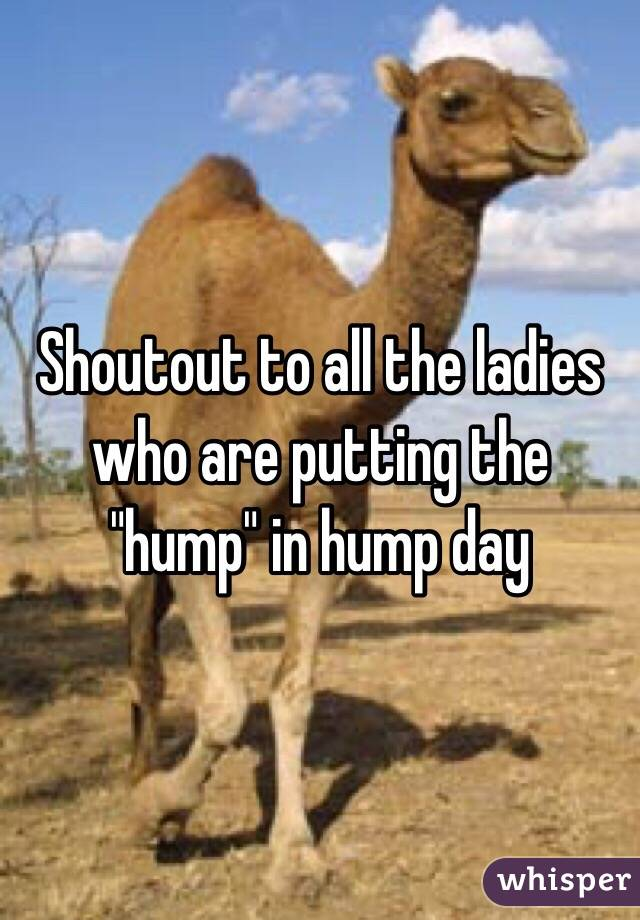 """Shoutout to all the ladies who are putting the """"hump"""" in hump day"""