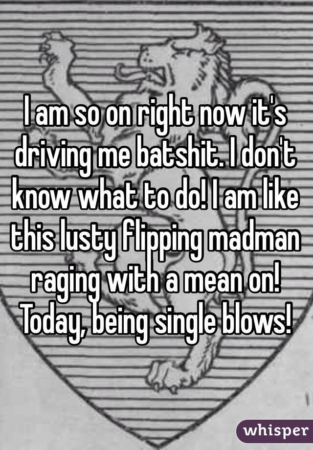 I am so on right now it's driving me batshit. I don't know what to do! I am like this lusty flipping madman raging with a mean on! Today, being single blows!