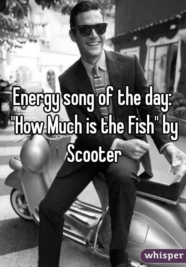 """Energy song of the day: """"How Much is the Fish"""" by Scooter"""