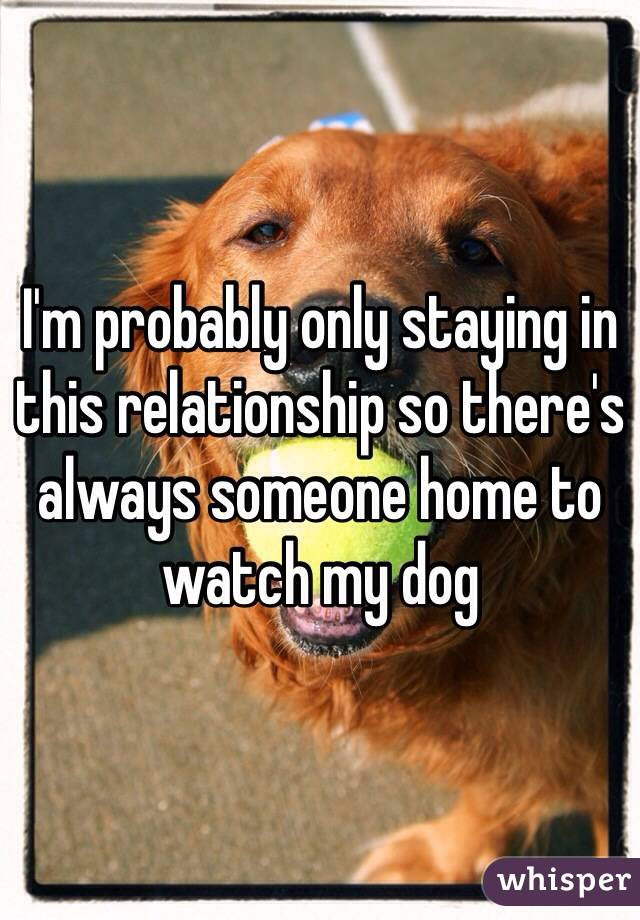 I'm probably only staying in this relationship so there's always someone home to watch my dog