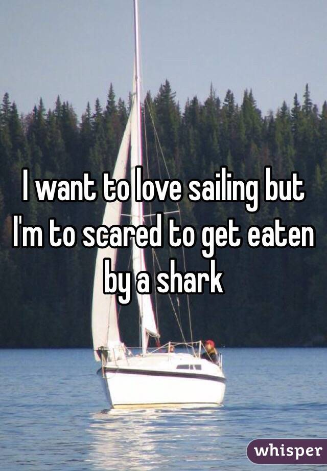 I want to love sailing but I'm to scared to get eaten by a shark