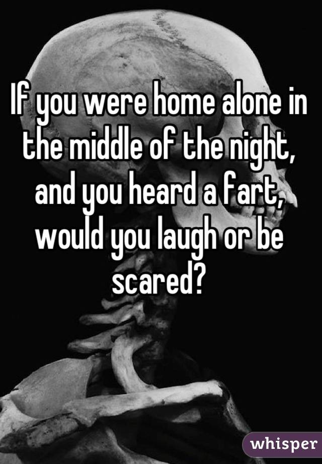 If you were home alone in the middle of the night, and you heard a fart, would you laugh or be scared?