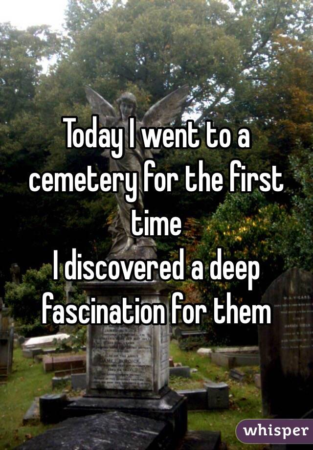 Today I went to a cemetery for the first time I discovered a deep fascination for them