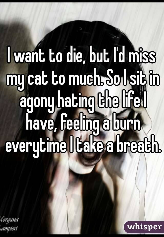 I want to die, but I'd miss my cat to much. So I sit in agony hating the life I have, feeling a burn everytime I take a breath.